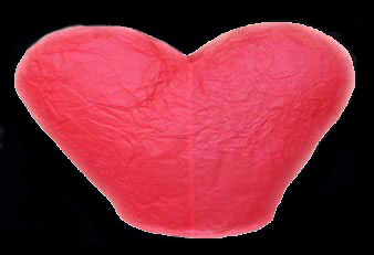 17-008 Heart Shaped Sky Lantern
